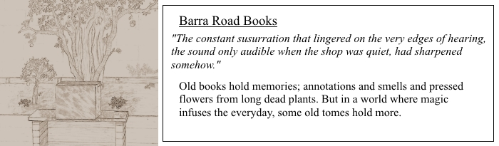 Barra Road Books